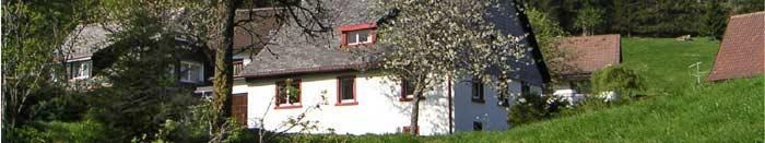 Panorama in Muggenbrunn